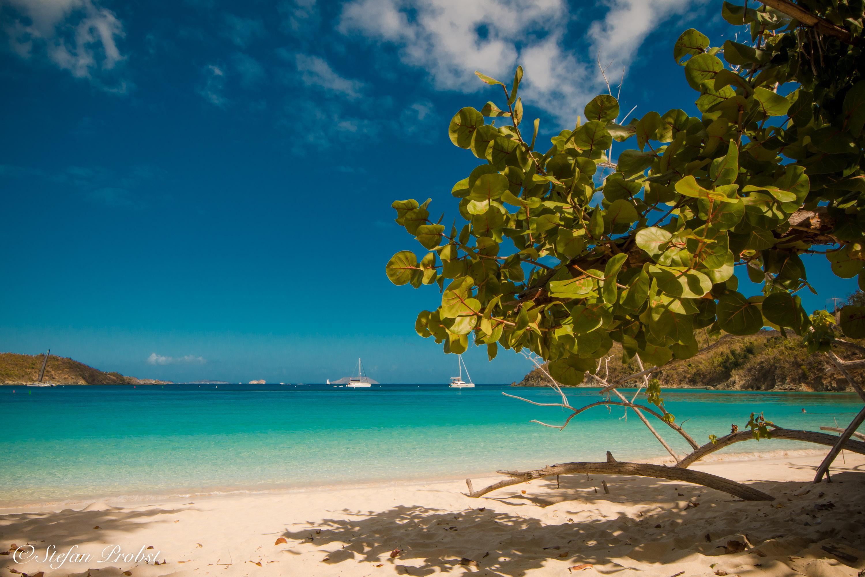 U.S. Virgin Islands - St. John - Hawksnest Beach